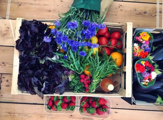 Fin & Farm Sussex Produce, Seasonal, Vegetables, Fruit & Flowers