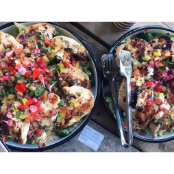 Kefir marinated chicken, tomato salsa, brown rice, broccoli, gluten free, lunch delivery catering