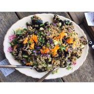 summer salad, aubergine, miso, spring onion & flower, lunch catering